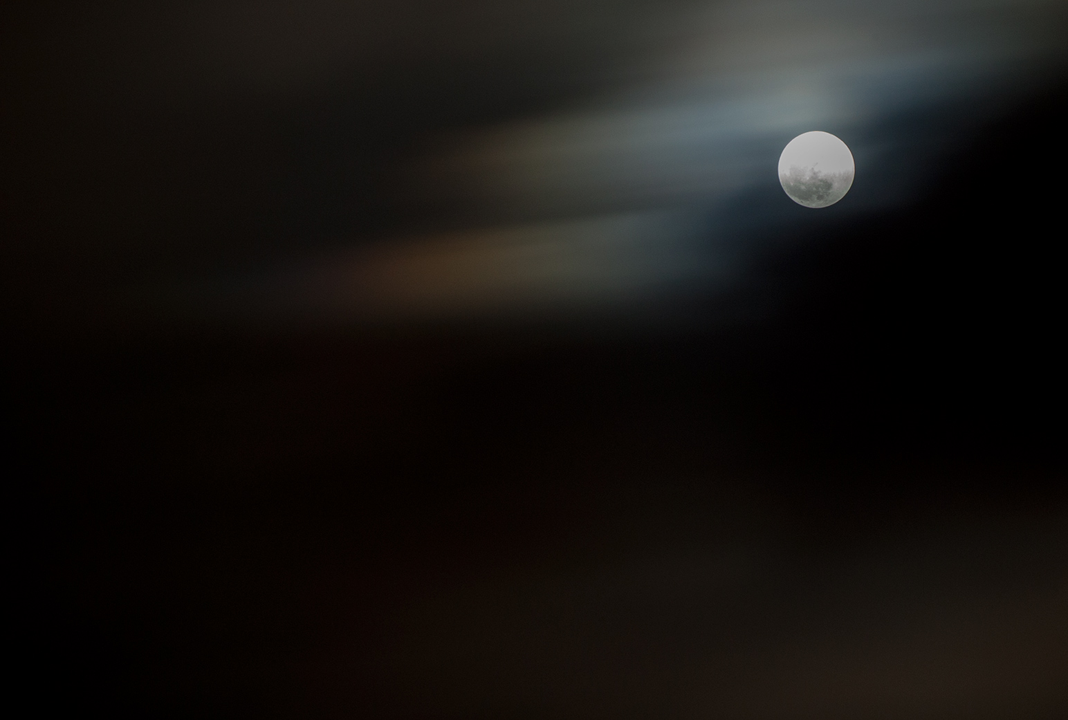 Nocturnal photography by David Baldwin